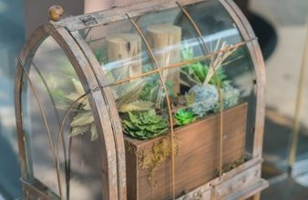 Photo of Terrarium making Workshop and a creative change in your personality