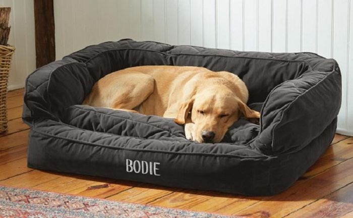 Bed Brands for the Dogs