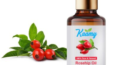 Photo of Rosehip Oil: Benefits and How to Utilize It On The Face