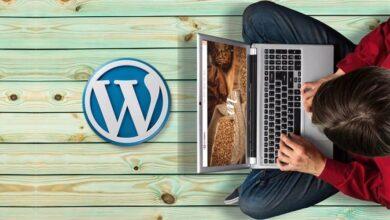 Photo of WordPress Courses