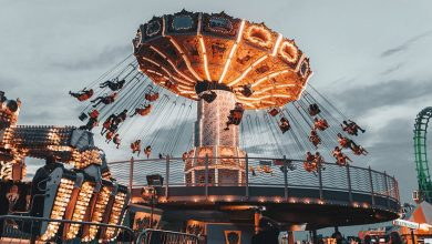 Photo of Essential Features to Look for in Amusement Parks