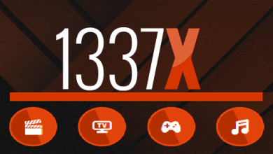 Photo of What Are the '1337 Torrents'?