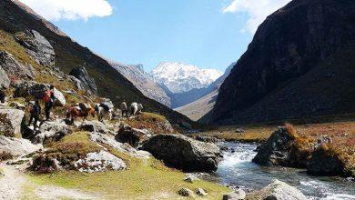 Photo of Easy Treks In Himachal Pradesh