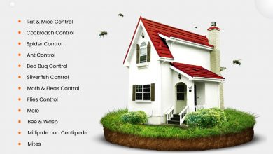 Photo of Best Pest Control Services in Surrey