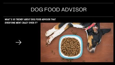 Photo of What's So Trendy About Dog Food Advisor That Everyone Went Crazy