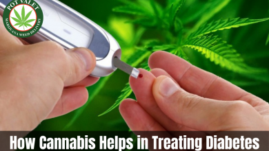 Photo of How Cannabis Helps in Treating Diabetes