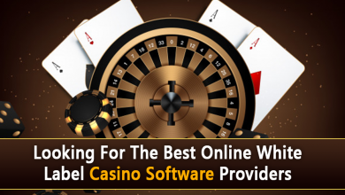 Photo of Looking For The Best Online White Label Casino Software Providers