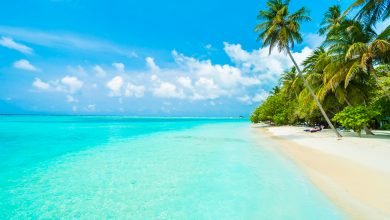 Photo of The Best Natural Attractions in the Cook Islands