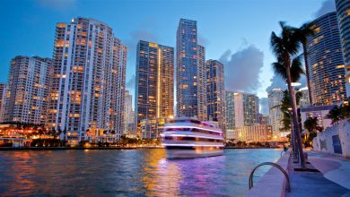 Photo of Explore the Reasons to visit Miami on your next vacation