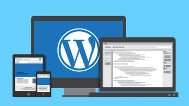 Photo of The Best Providers of WordPress design in Vancouver