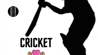 Photo of The Basic Principles Of Cricket companion